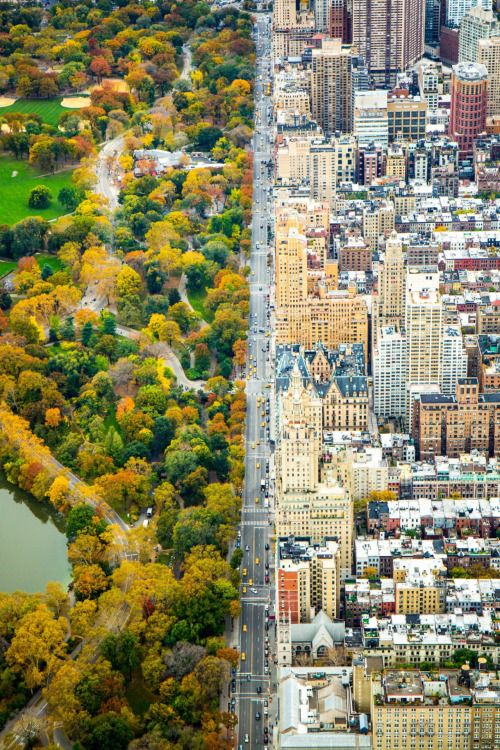 Central Park West in New York City, as seen from above where there is a split between the architecture of the city and the green of Central Park. Photograph by Kathleen Dolmatch
