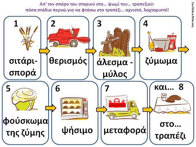 Δραστηριότητες, παιδαγωγικό και εποπτικό υλικό για το Νηπιαγωγείο: Πίνακας Αναφοράς για το Ψωμί και τα στάδια της παρασκευής του...
