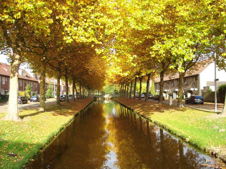 Grote Wielen @Zevenkamp Rotterdam Rotterdam ,The Netherlands