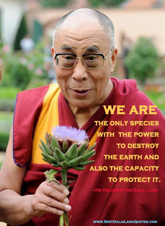 We are the only species with the power to destroy the earth - Dalai Lama