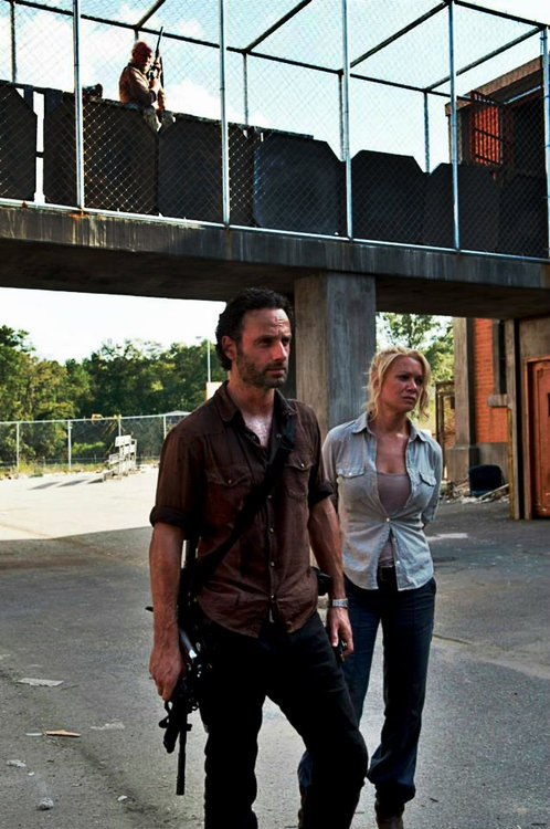 the walking dead 3x11 720p tv