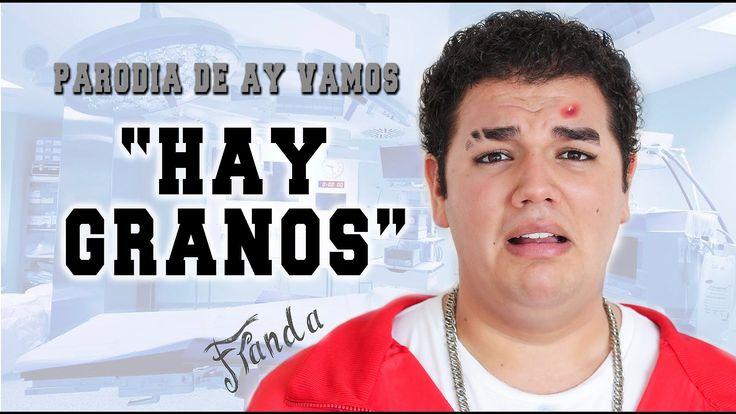 """""""Hay Granos"""" - PARODIA - AY VAMOS - Franda - pancholanda - 2015"""