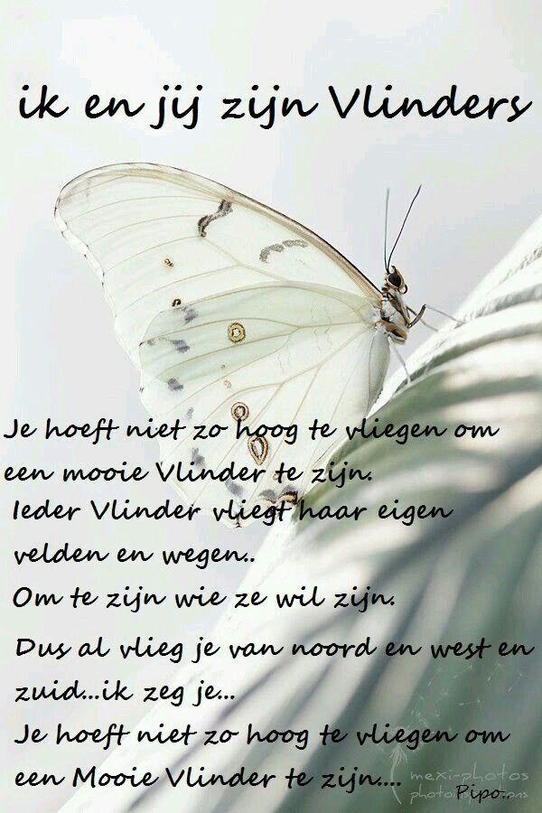 Ik en jij zijn vlinders