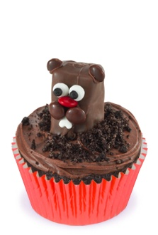 My sister's birthday is Thursday and it also happens to be Groundhog Day! I am making these!