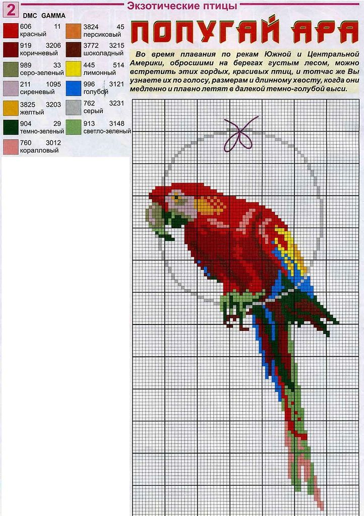 Borduurpatroon Kruissteek Papegaai - Parkiet *Cross Stitch Pattern Parrot ~Ara *Macaw~