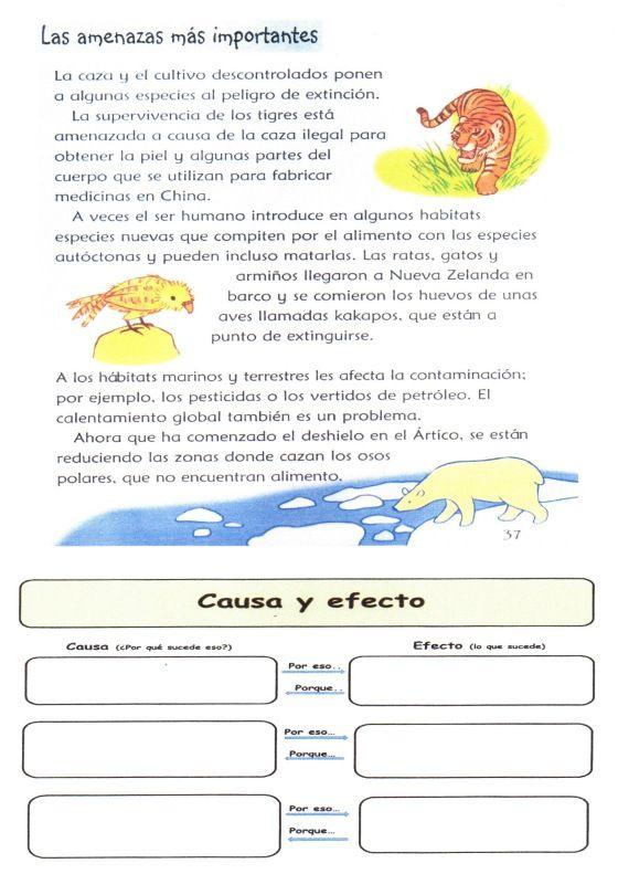 """CEIP """"Santa Bárbara"""". Matarrosa. León. Texto  y Organizador Gráfico utilizados para presentar a los alumnos la relación causa/efecto y sus p..."""