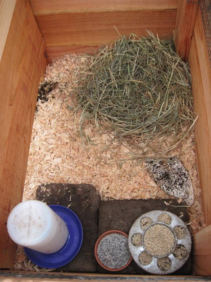 The New Quail Coop is Finished | Out of Eden