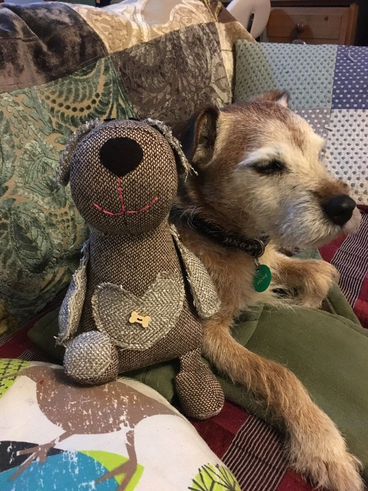 Tweed Soft Toy Border Terrier Ready To Go Now Measures 10 25