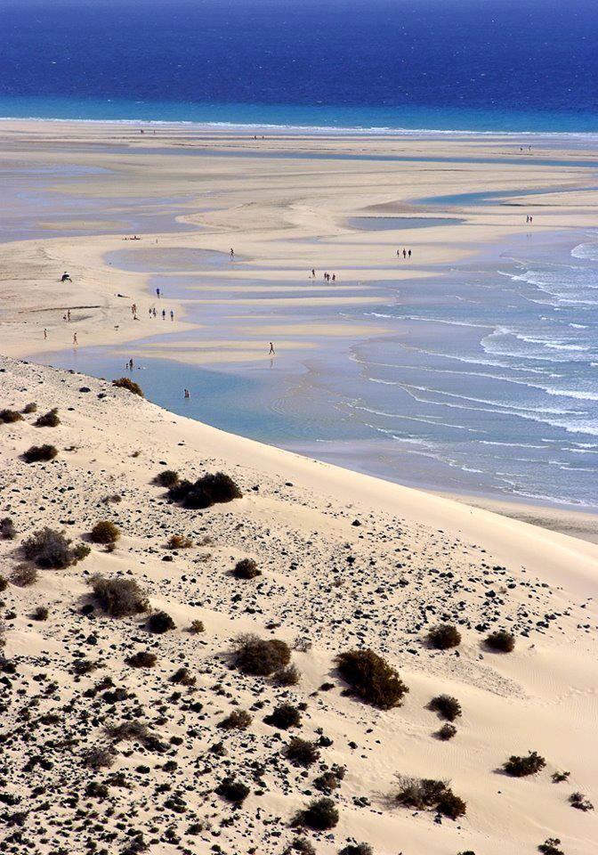 Sotavento beach, Fuerteventura (Canary Islands)
