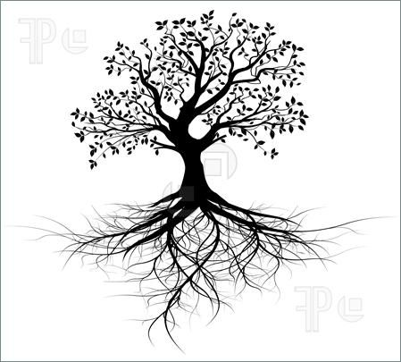 Illustration of whole black tree with roots isolated white background vector