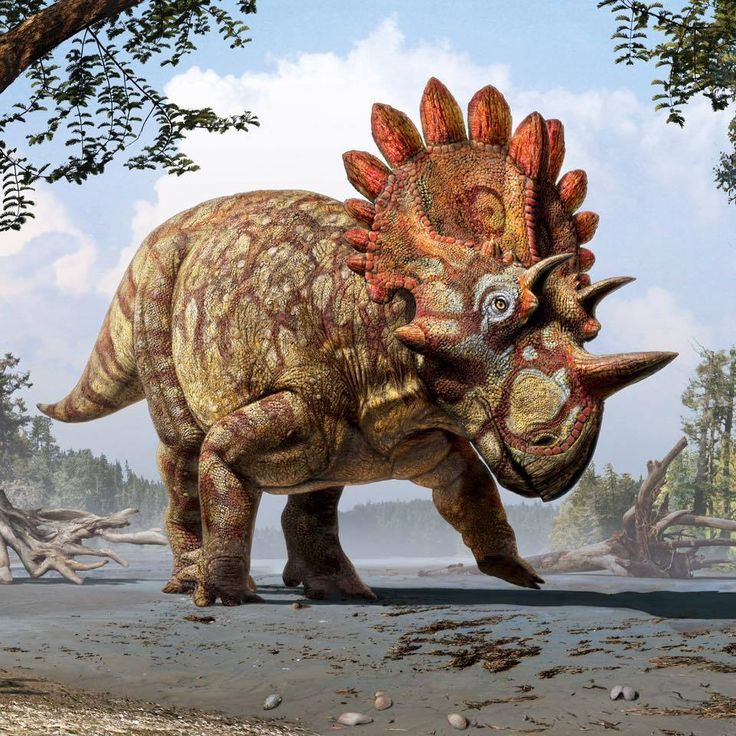 "Julius Csotonyi   Regaliceratops peterhewsi (a.k.a. ""Hellboy"")"