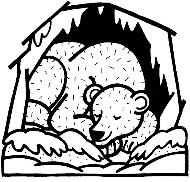 Winter Animals Coloring Pages   hibernation colouring pages