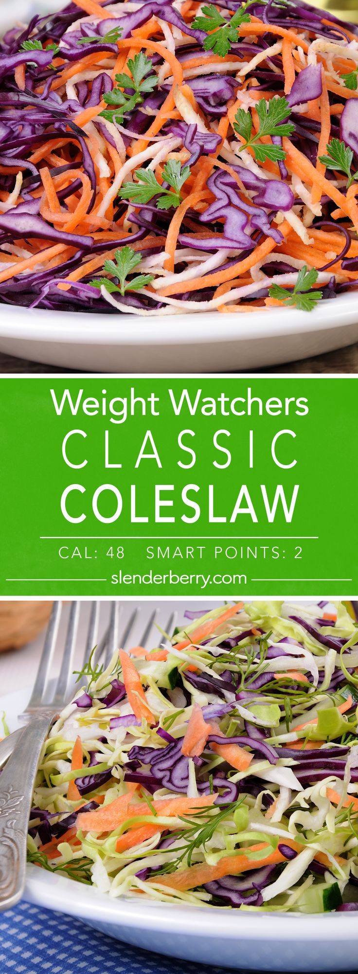 Easy Coleslaw - 222 Best Images About COLESLAW RECIPES On Pinterest Cole Slaw