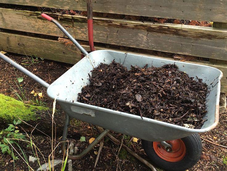 """""""Muldnet"""" løv og kvist fra kvistkverna i våres er blitt perfekt jordforbedringsmateriale. Her: sammen med tang og bokashi"""