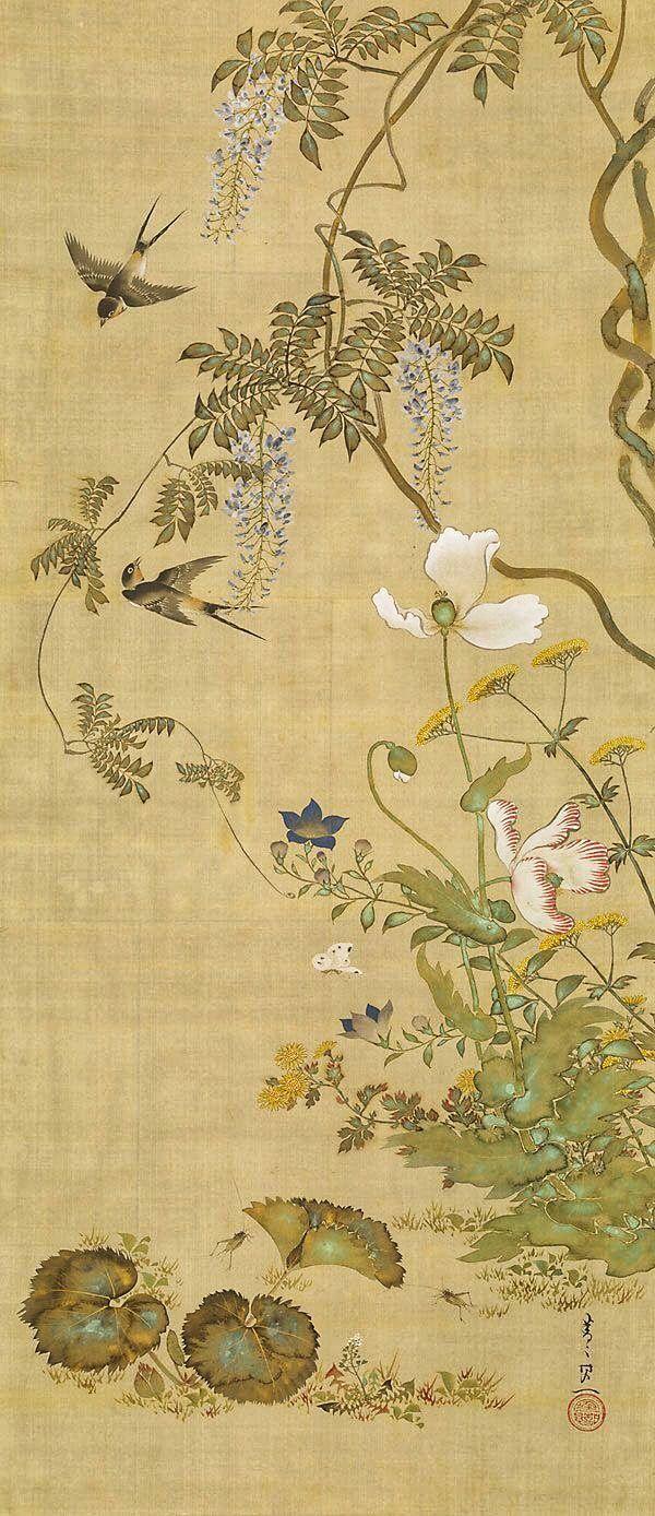 Suzuki Kiitsu 鈴木其一 . One of a set of Birds and Flowers of the Twelve Months paintings. 1855. Japanese hanging scroll; color on silk. Rinpa School. Art Gallery NSW (Australia).
