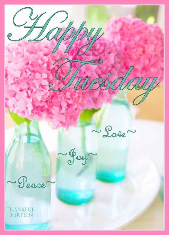Happy Tuesday! ❤️