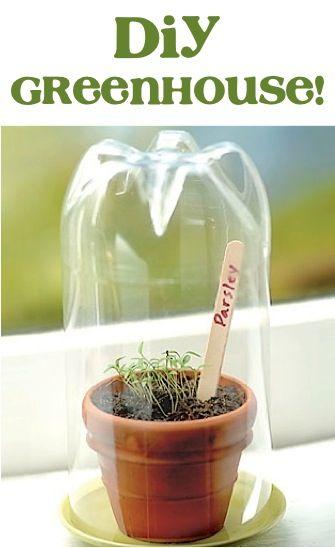 DIY Greenhouse ~ genius! #greenhouse