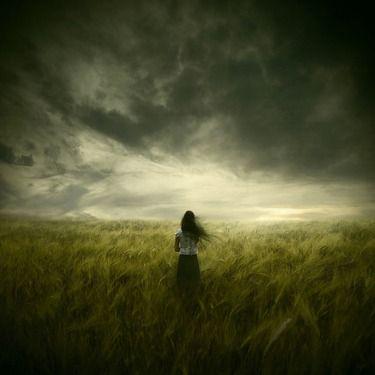 """Michael Vincent Manalo,""""The Premonition"""""""
