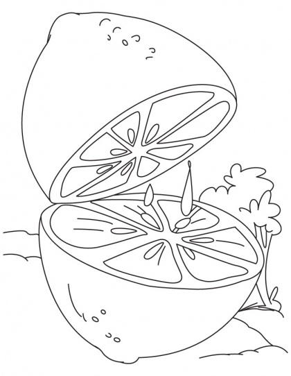 Lime Coloring Page | Download Free Lime Coloring Page for kids | Best Coloring Pages