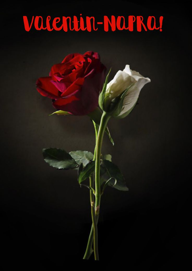 Boldog Valentin-napot! www.leplap.hu