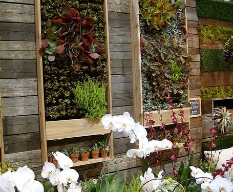 Vertical Wall Garden Ideas inspiring ideas for gardens in small spaces vertical succulent gardenssucculent wallsucculents Find This Pin And More On Hanging Garden Ideas Vertical Gardens And Living Walls