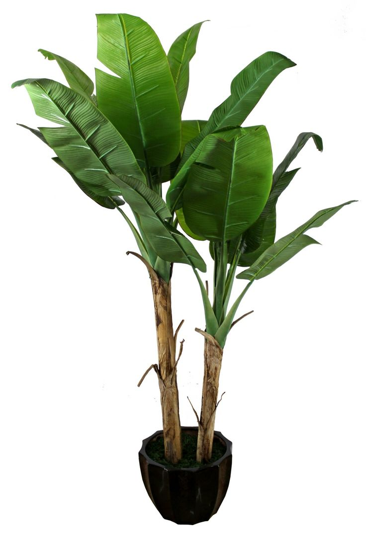 Banana leaf plant fake version please home decor for Artificial banana leaves decoration