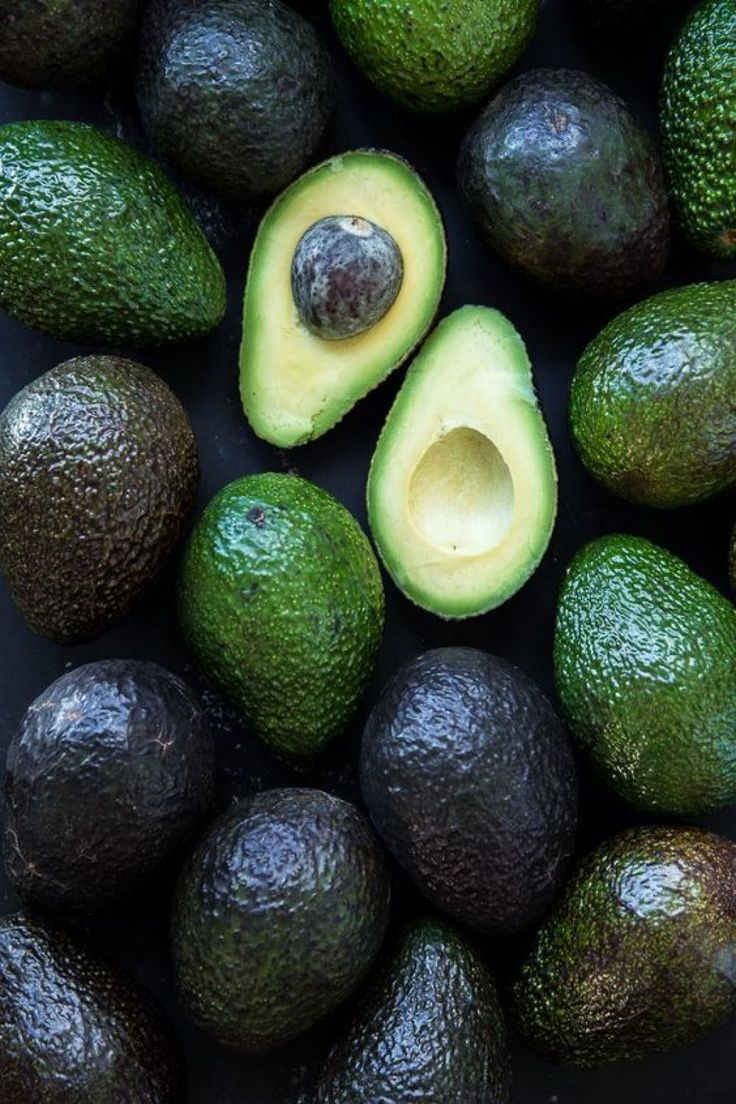 5 - PALTA - cover
