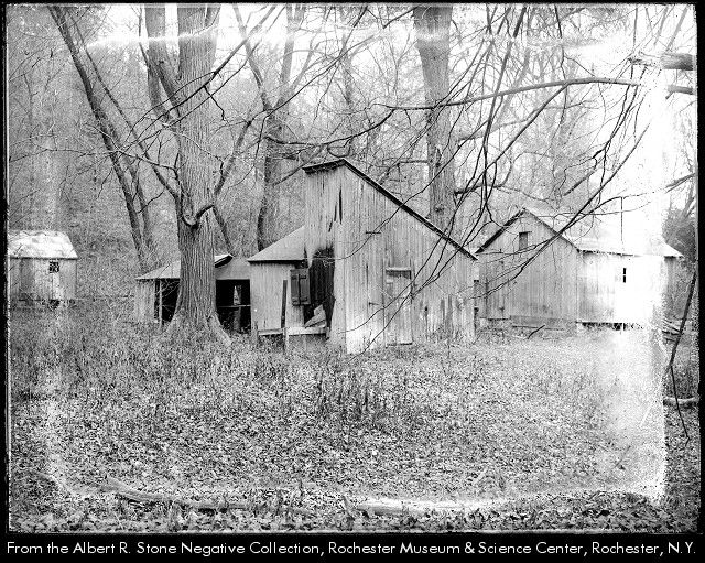 Rand powder mill, established by Daniel C. Rand more than half a century before the date of this photograph, stood back of Bushnell's Basin. In this photograph old wooden sheds, part of the original mill, are beginning to disintegrate. Trees and shrubs can be seen encroaching upon the buildings.  c1916 Historic sites--New York (State)--Perinton.