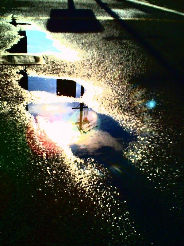 デジタルハリネズミ 3.0 - 路傍 -  陽光  水源  電柱  路傍  丙壬良好  - Camera Talk -