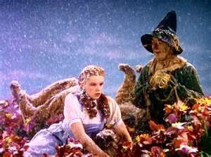 Dorothy and the Scarecrow wake up in the poppy field after Glinda made it snow....