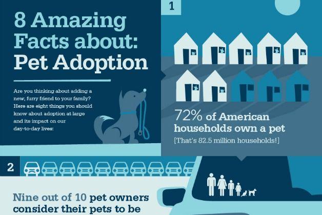 8+Amazing+Facts+About+Pet+Adoption