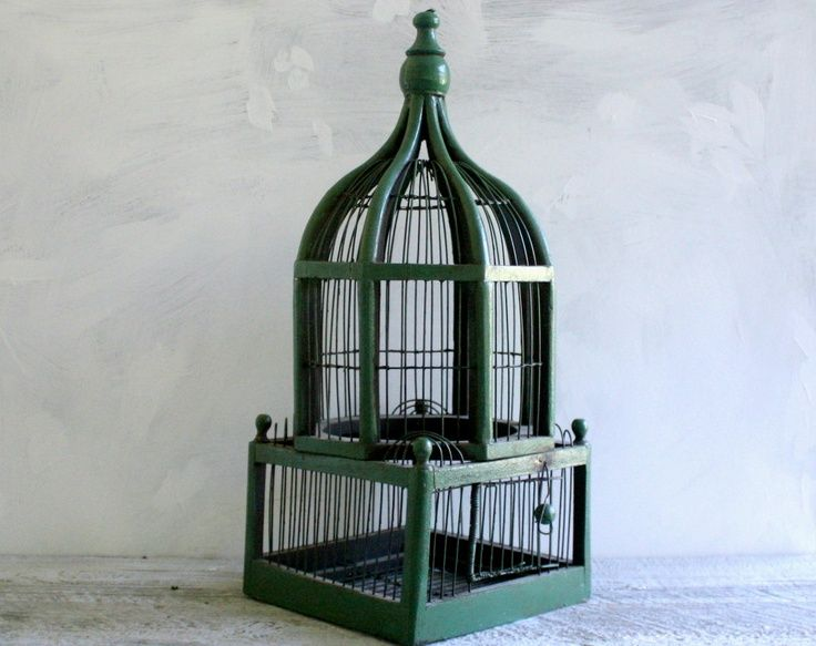 Victorian Backyard Birds :  Birdcages on Pinterest  Antique bird cages, Bird cages and Birdhouses