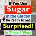 8 Surprising Sugar Uses In The Garden You Don't Believe Are Possible