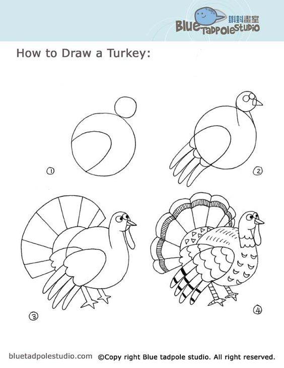 Diagram Of A Turkey Drawing - Wiring Diagram Database •