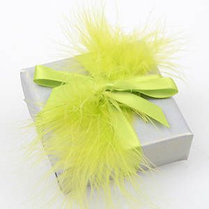 DIY Gift Wrapping with Feathers