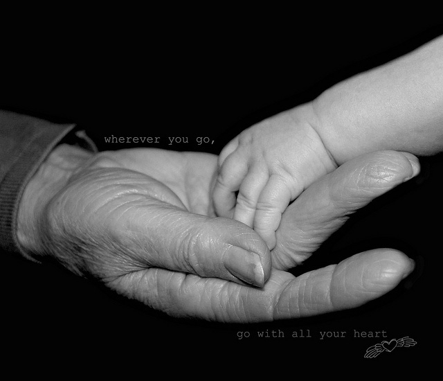 Grandparent/great-grandparent photo idea - Photo By Ike06