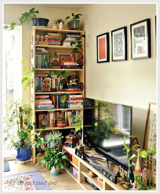 Boho , urban jungle bookcase atyling