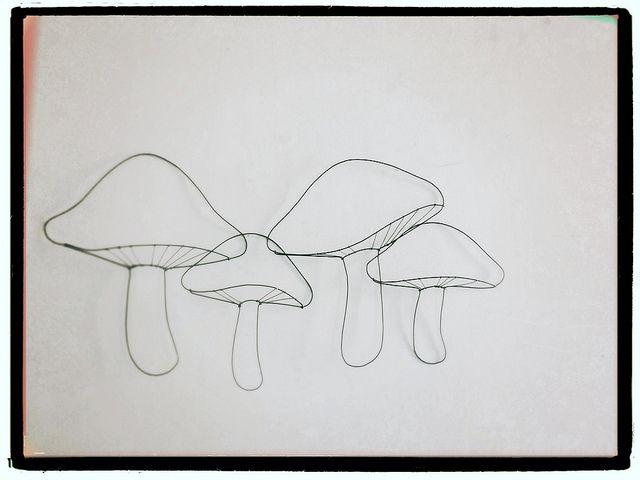 funghi | mushrooms