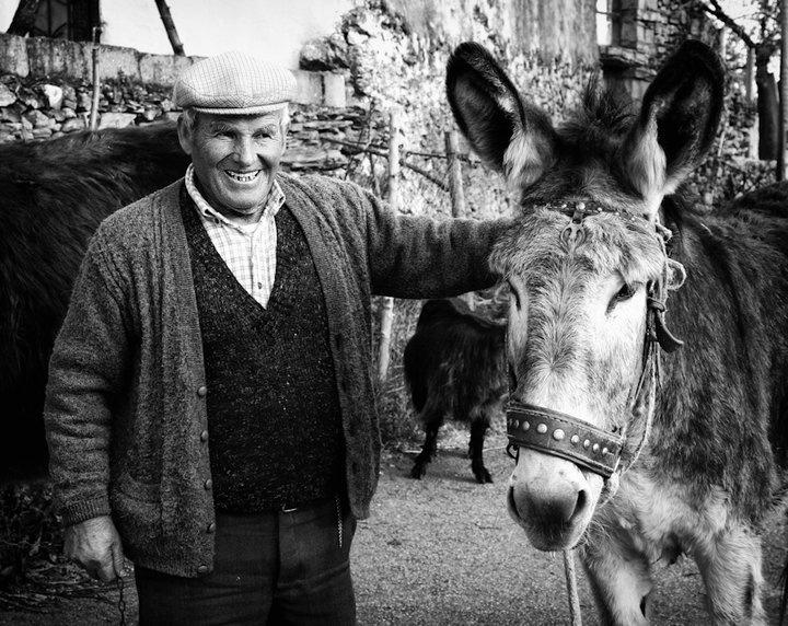 Homem feliz com o seu burro...