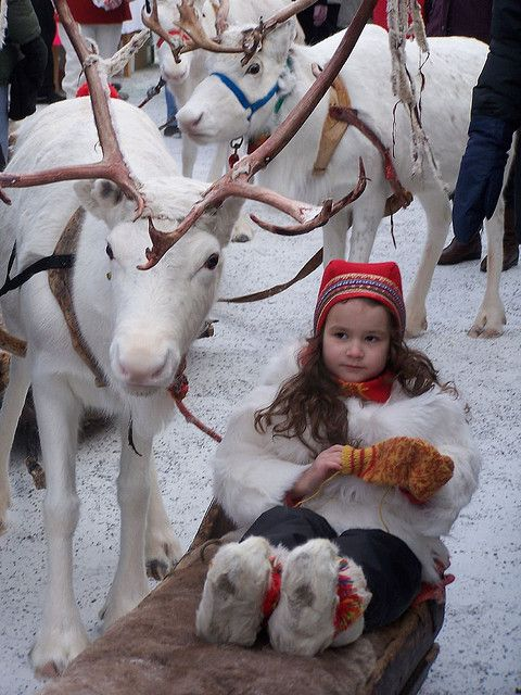 "child and reindeer......THIS IS HER FAVORITE PET......HE FOLLOWS HER EVERYWHERE....SHE NAMED HIM: ""SIR RALEIGH""..........ccp"