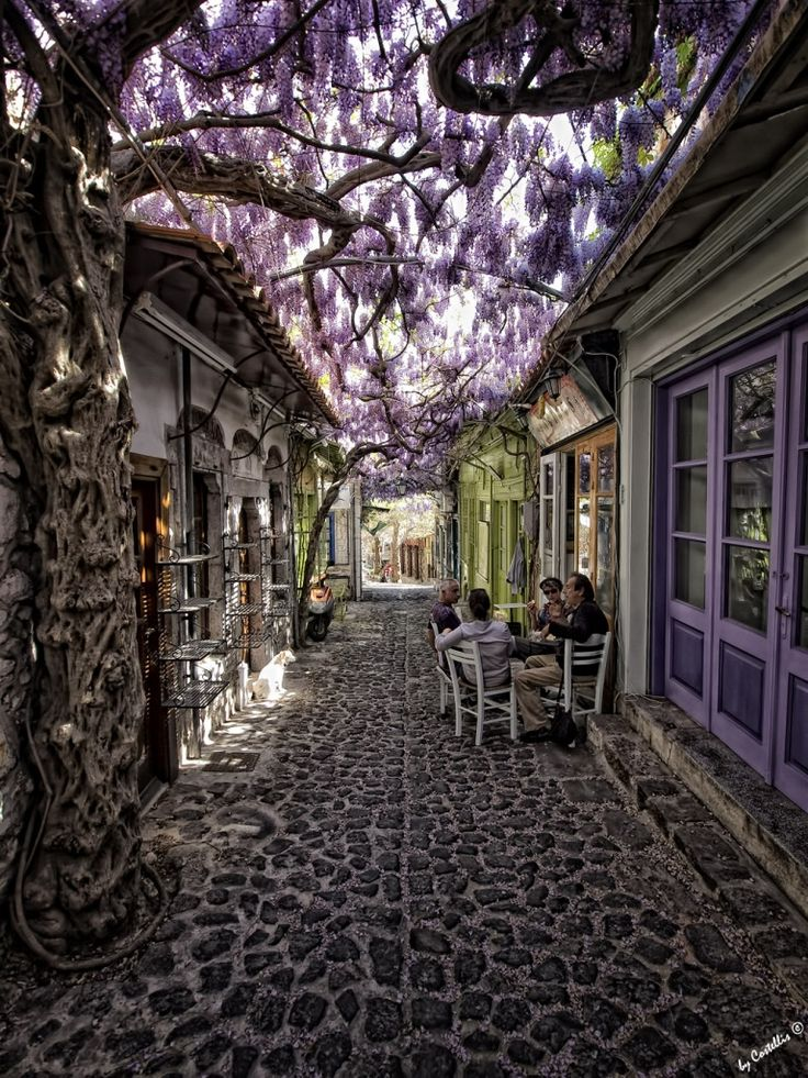 A cafe in Molyvos, Lesvos Island, Greece