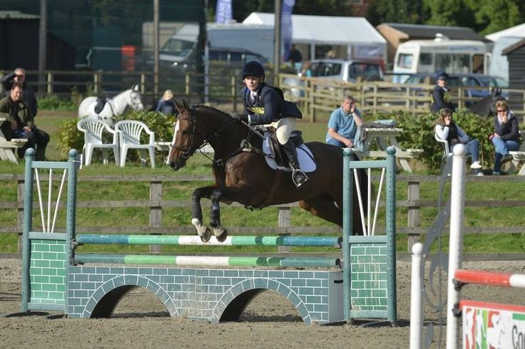 It has been a busy half term for the Equestrian team; read about how they have been doing in the run up to the National Schools Equestrian Championships at Addington!