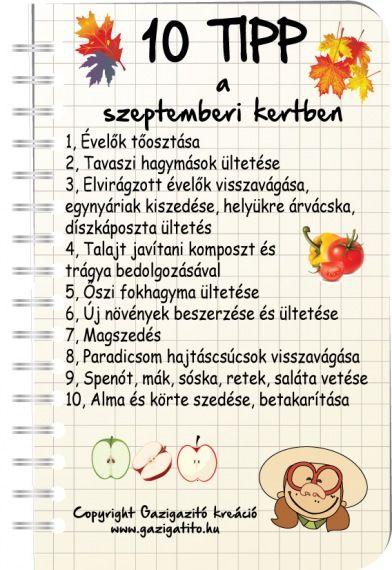 Szeptember havi tennivalók - gazigazito.hu