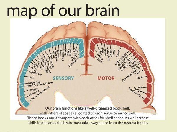Tipos de sinapsis yahoo dating