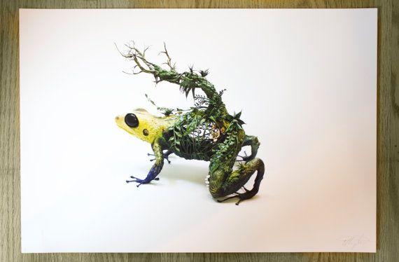 the mimic  dart frog  Original Giclee Edition Print