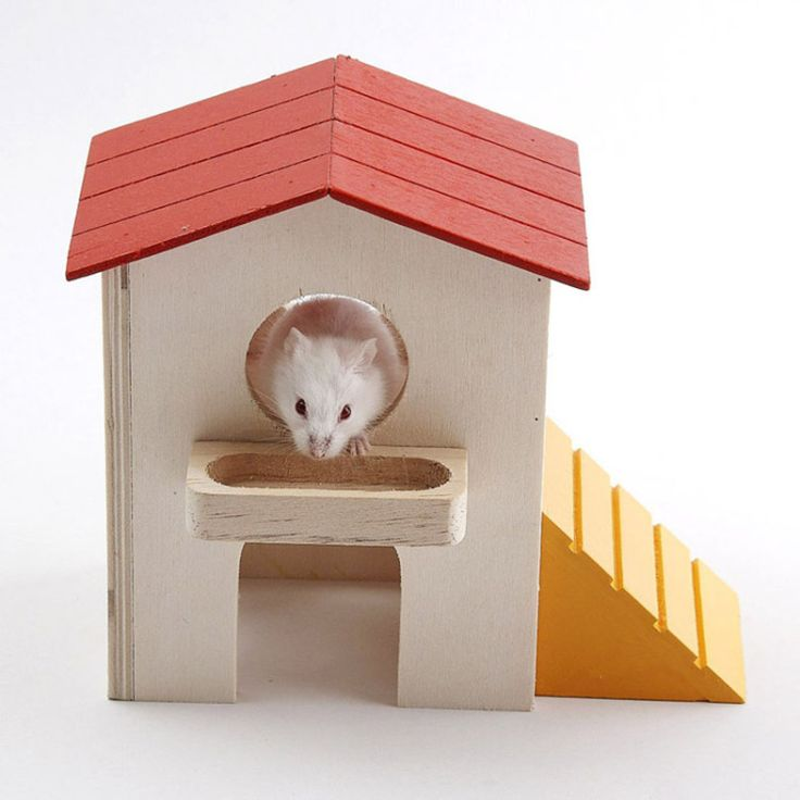 Hamster Supplies Hamster Blocks hut Small pet cage nest box pet Toys