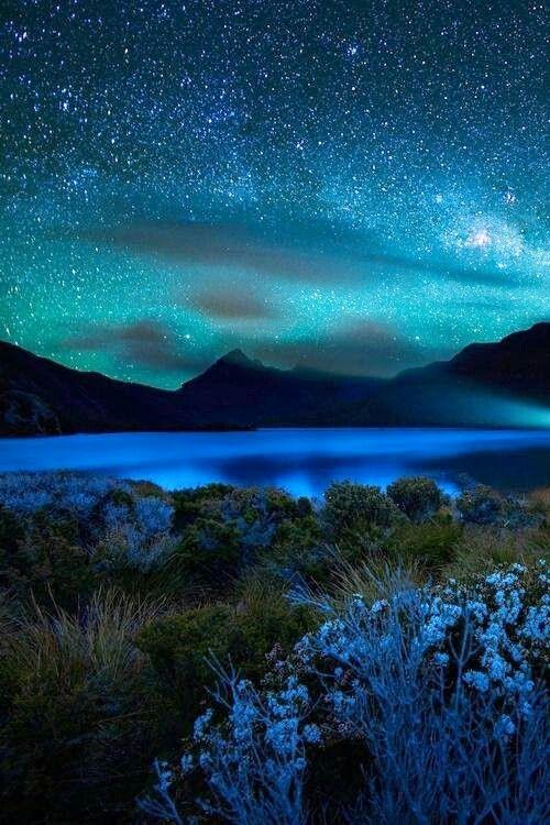 Bellos paisaje estrellado