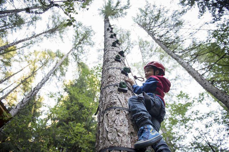 Außergewöhnliche Spielmöglichkeiten wie das gesicherte Klettern auf hohen Bäumen gibt es auch. Alle Details zum Familienhotel Huber findet ihr auf: http://kinderhotel.info/kinderhotel/familienhotel-huber