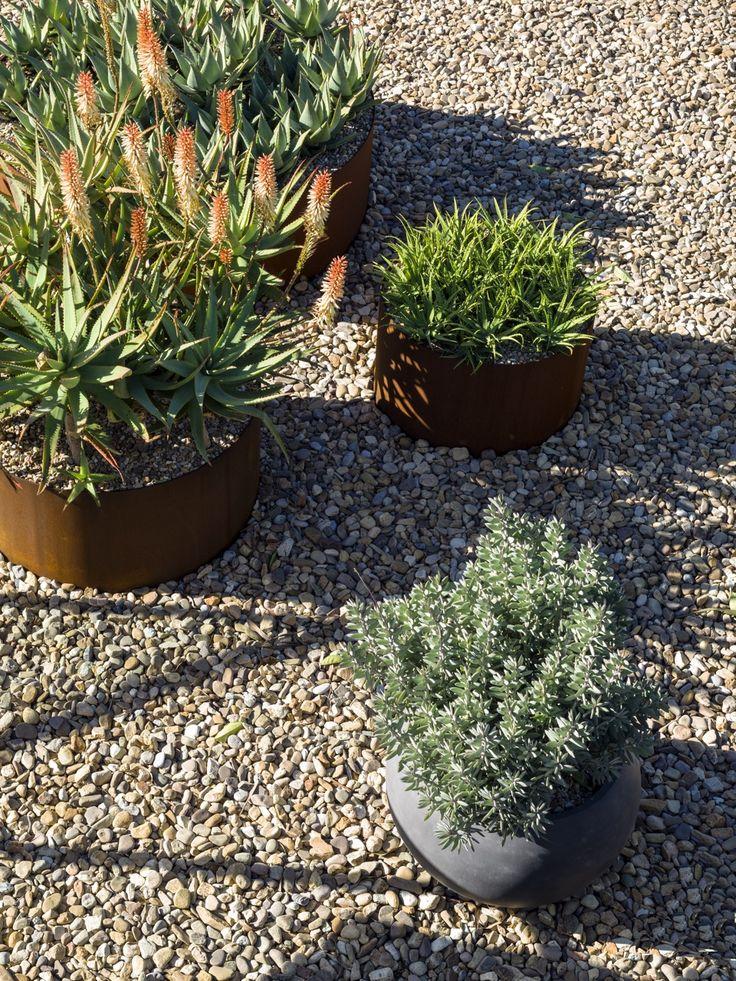 Interiors | alwill  #outdoor #plants #succulents