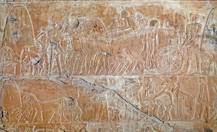 https://flic.kr/p/N62qY | Tomb of Khaemhat | Khaemhat was Superintendent of the Granaries in the reign of Amenhotep III. Khaemhat's main function was agricultural produce control and its safe storage and distribution.